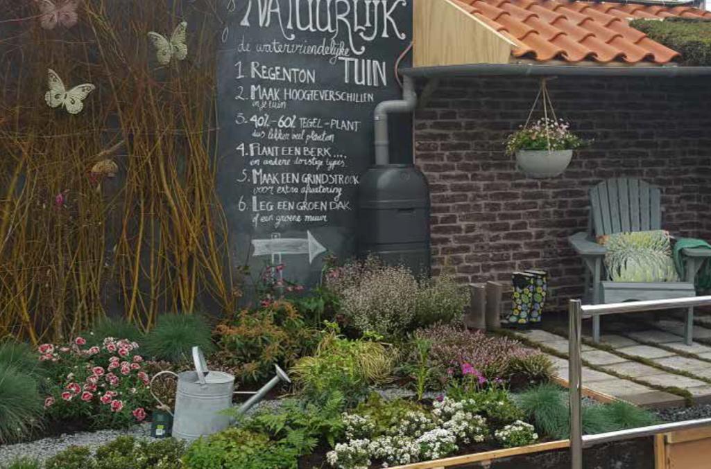 Voorbeeld van een regentuin bij een tuincentrum