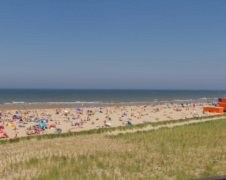 Satd aan zee: Zonaanbidders op zuiderstrand Den Haag